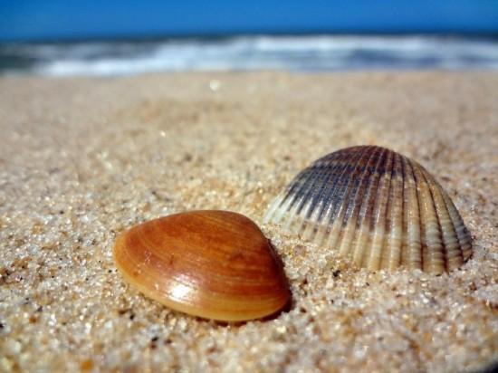 Благоприятное влияние туристических поездок на жизнь3