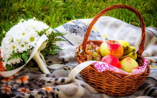 Как организовать хороший пикник?2